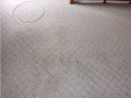 Residential_Stains_Before